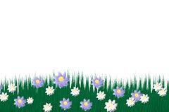 Green grass on a transparent background. glade in the forest grass. Chamomiles on the glade. royalty free illustration