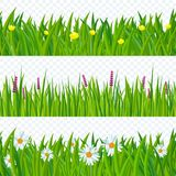 Spring grass and flowers. Fresh green meadow and clear sky seamless  vector background set Royalty Free Stock Photos