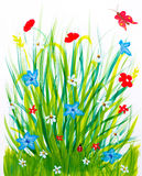 Spring grass and flowers. Meadow brush childish drawing Royalty Free Stock Images