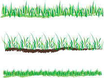 Spring Grass Vector Royalty Free Stock Image