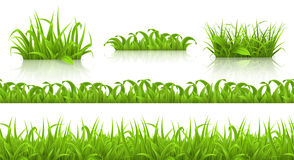 Spring grass seamless pattern and icons, vector Royalty Free Stock Photos