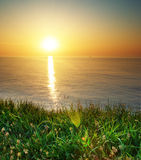Spring grass and seascape Royalty Free Stock Photos