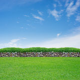 Spring grass and stone wall. On blue sky stock image