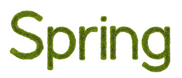 Spring Grass. Spring word made from grass Royalty Free Stock Photos