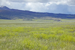 Spring grasslands and mountains in Centennial Valley near Lakeview, MT Royalty Free Stock Images