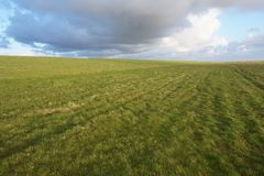 Infinity sky and meadow horizon. Spring grean grass meadow and beautiful cloudy sky royalty free stock photography