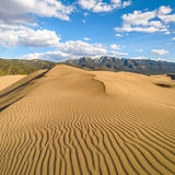 Spring at Great Sand Dunes - Square Royalty Free Stock Photography
