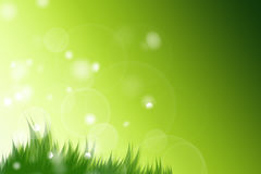 Spring green Royalty Free Stock Images