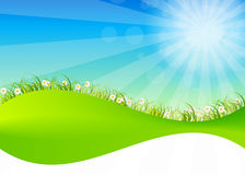 Spring green background. Grass and flower. Royalty Free Stock Image