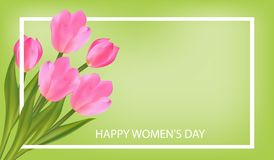 Spring green Background with Tulips. March 8 International Women`s Day greeting card template with flowers. Vector. Illustration vector illustration