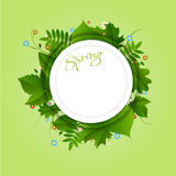 Spring green background. Spring white circle frame with green different leaves and colorful flowers on light green background Stock Image