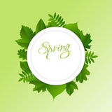 Spring green background Royalty Free Stock Photos
