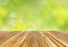 Spring green and bokeh sunlight background Royalty Free Stock Images