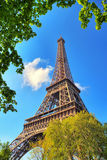 Spring green Eiffel Royalty Free Stock Photography