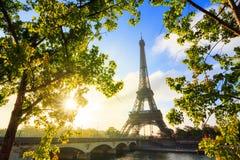 Spring green Eiffel sunrise Stock Photos
