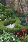Spring green garden Royalty Free Stock Images