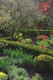 Spring green garden Stock Photo