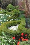 Spring green garden Stock Photography