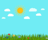 Spring green grass and flowers landscape. Vector illustration Royalty Free Stock Photography