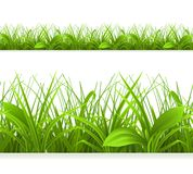 Spring green grass. Seamless border. Detailed vector illustration Stock Photography