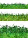 Spring green grass set Royalty Free Stock Photos