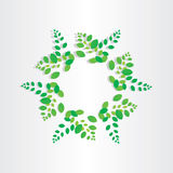 Spring green leafs circle background Royalty Free Stock Images