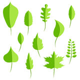Spring green leaves in flat style set Royalty Free Stock Photos
