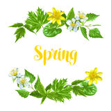 Spring green leaves and flowers. Card with plants, twig, buds Royalty Free Stock Photos