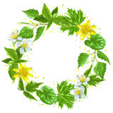 Spring green leaves and flowers. Wreath with plants, twig, buds. Spring green leaves and flowers. Wreath with plants twig buds royalty free illustration