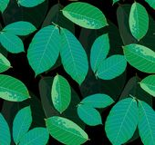 Leaves seamless pattern background. vector illustration