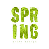 Spring green leaves text. Royalty Free Stock Photo