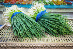 Spring green onion with chives Stock Photo