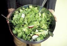 Spring green salad Royalty Free Stock Image