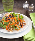 Spring green salad with carrot Royalty Free Stock Photos