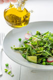 Spring green salad with mix of vegetables Stock Photography