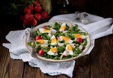 Spring green salad from organic radish, wild garlic with boiled eggs, olive oil and parmesan. stock images
