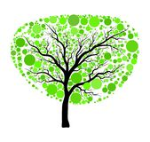 Spring green tree vector isolated on white background Stock Photography