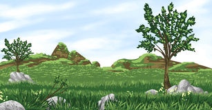 Spring Green Valley. Vector illustration of grassland valley landscape with vector sky. Artwork does NOT include any gradients, to maximize compatibility with Stock Images