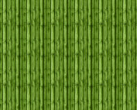 Spring 2017 Greenery abstract background material. Bamboo Stock Photo
