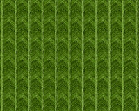 Spring 2017 Greenery abstract background pattern. Of angular weave Royalty Free Stock Photo