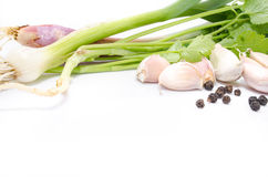 Spring greenery is with a garlic and grains of pepper Stock Photography