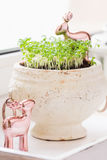 Spring greenery on windowsill. Spring greenery in pot with deer decorations on windowsill. Kitchen garden Stock Image