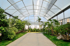 Spring greenhouse. Greenhouse for cultivating flowers in park Royalty Free Stock Images