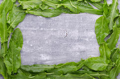 Spring greens for health.  Fresh sorrel on grey wooden table. Fresh sorrel on grey wooden table. Spring greens for health Stock Photo