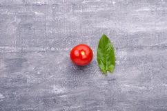Spring greens for health.  Fresh sorrel  and tomato on grey wood Stock Images