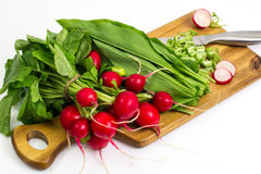 Spring greens radishes and wild garlic, sliced for vegetarian sa. Lad. Studio Photo Stock Photo