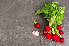 Spring greens radishes and wild garlic, sliced for vegetarian sa Royalty Free Stock Photos