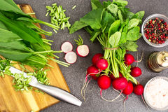 Spring greens radishes and wild garlic, sliced for vegetarian sa Stock Photos