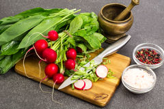 Spring greens radishes and wild garlic, sliced for vegetarian sa Royalty Free Stock Photo