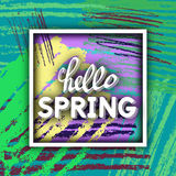 Spring Greeting. Royalty Free Stock Images
